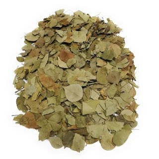 Big Size Dried Broken Sidr Leaves from Yemen